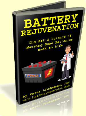 Battery Rejuvenation by Peter Lindemann